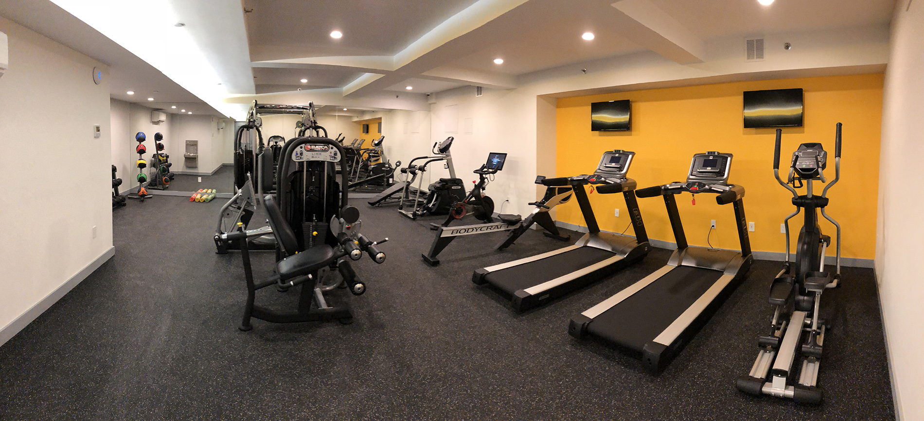 Fitness Center with Professional Equipment